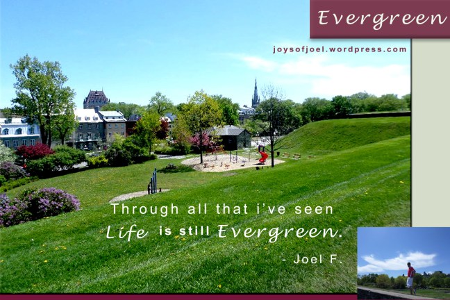 Evergreen, joys of joel poems, poetry , nature photography,  poem about faith and life, inspirational quotes