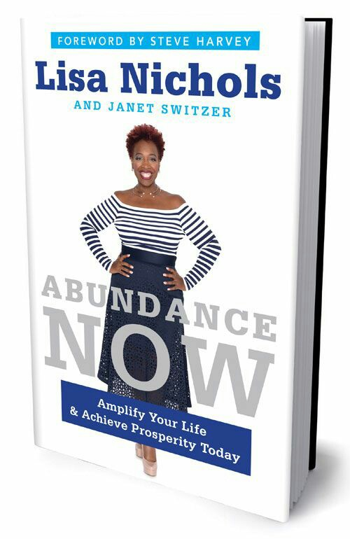 Abundance Now (Unabridged) by Lisa Nichols, Janet Switzer.